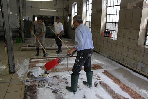 Bild 2 Bio Teppichreinigung und Teppichreparatur Arman in Mannheim