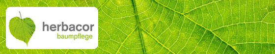 herbacor Baumpflege