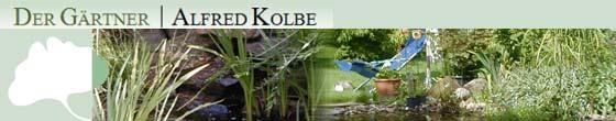 Alfred Kolbe Der Gärtner