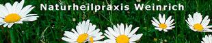 Bild zu Weinrich Naturheilpraxis in Braunschweig