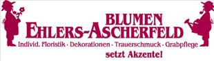 Ehlers-Ascherfeld