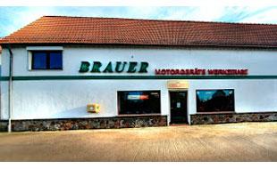 Logo von Brauer Ronald