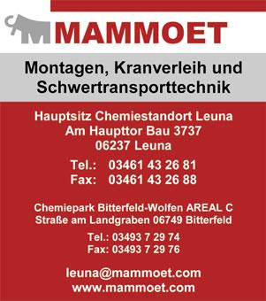 Bild 1 Mammoet Deutschland GmbH in Leuna