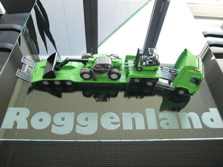 Bild 2 Roggenland Arbeitsbühnen u. Staplervermietung GmbH in Everswinkel