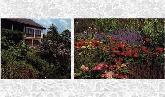 Bild 1 KRAUTHOFF Garten- u. Landschaftsbau GmbH in Burgwedel