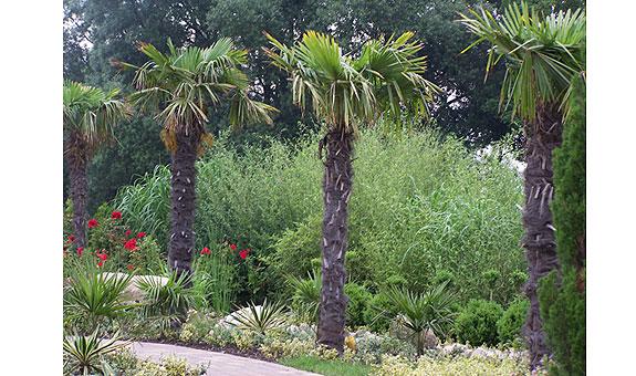 Bild 5 Radeck Gartengestaltung GmbH in Bremerhaven