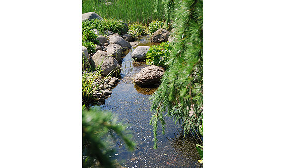 Bild 7 Radeck Gartengestaltung GmbH in Bremerhaven