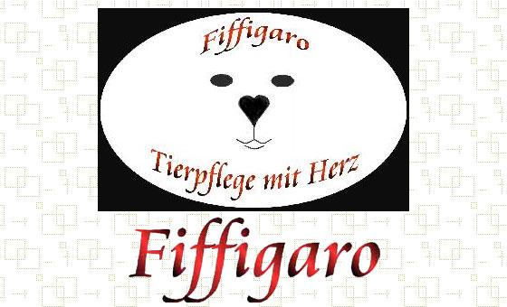 Bild 1 Fiffigaro in Bremen