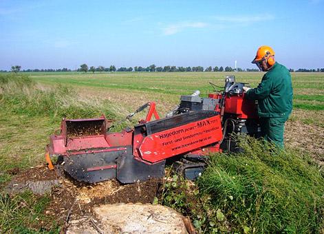 Bild 9 Baumpflege Gregor in Irxleben