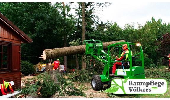 Bild 3 Baumpflege Völkers GmbH in Neustadt