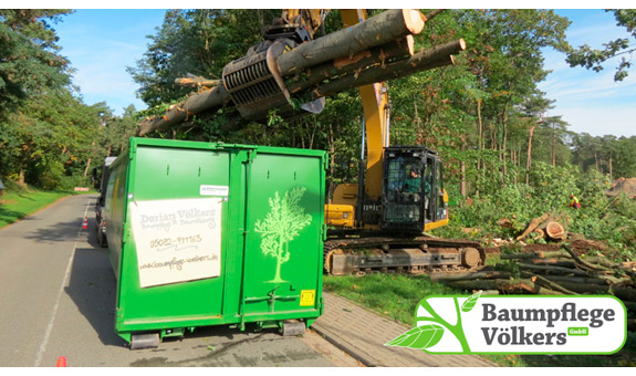 Bild 5 Baumpflege Völkers GmbH in Neustadt