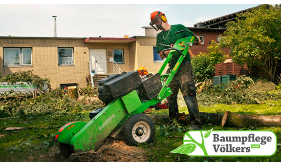 Bild 6 Baumpflege Völkers GmbH in Neustadt