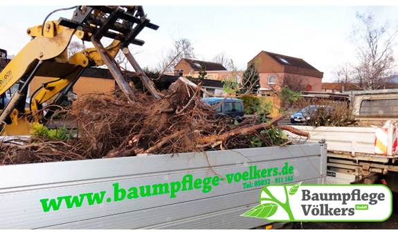 Bild 7 Baumpflege Völkers GmbH in Neustadt