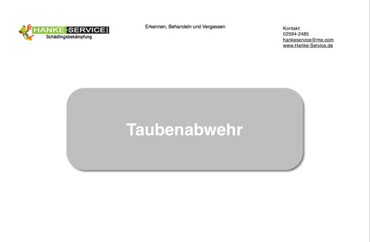 Bild 6 Hanke - Service Schädlingsbekämpfung Holz- u. Bautenschutz GmbH in Dülmen