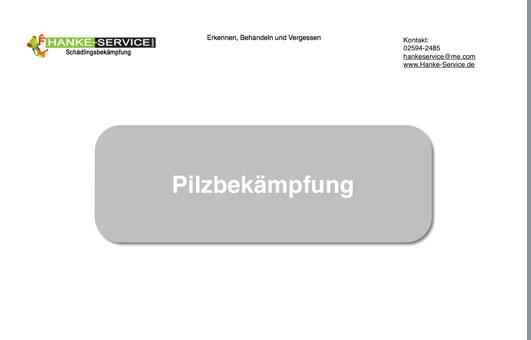 Bild 8 Hanke - Service Schädlingsbekämpfung Holz- u. Bautenschutz GmbH in Dülmen