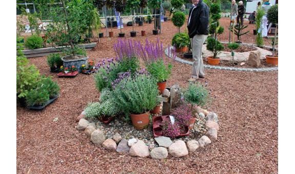 Gartengestaltung Mit Steinen Und Rindenmulch Am Hang – databypass.info