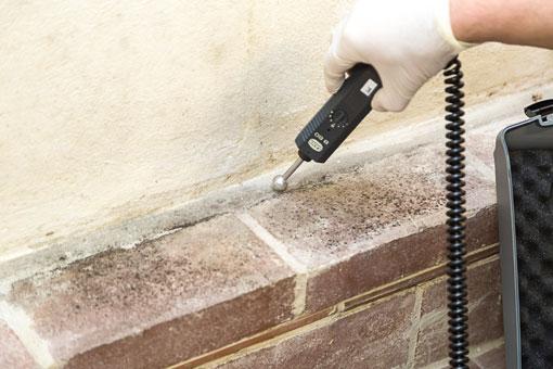 Bild 5 ABC-Schädlingsbekämpfung & Hygienemanagement in Minden