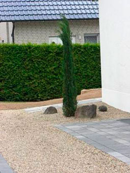 micus garten und landschaftsbau 33034 brakel auenhausen ffnungszeiten adresse telefon. Black Bedroom Furniture Sets. Home Design Ideas