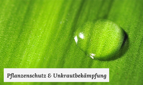 Bild 5 Enviro Pest Control GmbH in Braunschweig