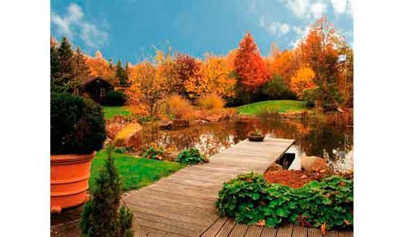 Bild 10 Theilmeier Garten & Landschaftsbau in Everswinkel