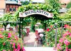 Lokale Empfehlung Restaurant Pension Lindenhof