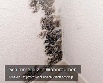 Bild 2 Thomas Hohmeyer Bautenschutz in Bremervörde