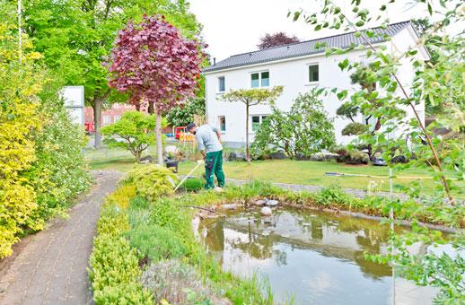 Bild 4 Menke Bodo Dipl.-Ing. Dienstleistungsunternehmen im Gartenbau in Hannover