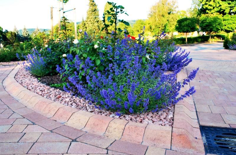 ALBA Gartengestaltung