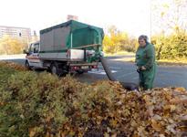 Bild 6 B&R Dienstleistungen RUND ums HAUS OHG in Leipzig
