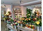 Lokale Empfehlung Blatt und Blüte Inh. Jana Voigt