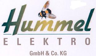 Elektro-Hummel
